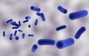 Controlling Legionella Bacteria in Water Systems